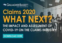 Claims 2020: What Next?